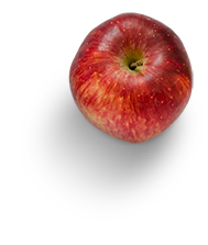 fruit-(4)